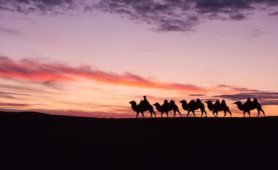 夕暮れのバダインジャラン砂漠を行く遊牧民のキャラバン