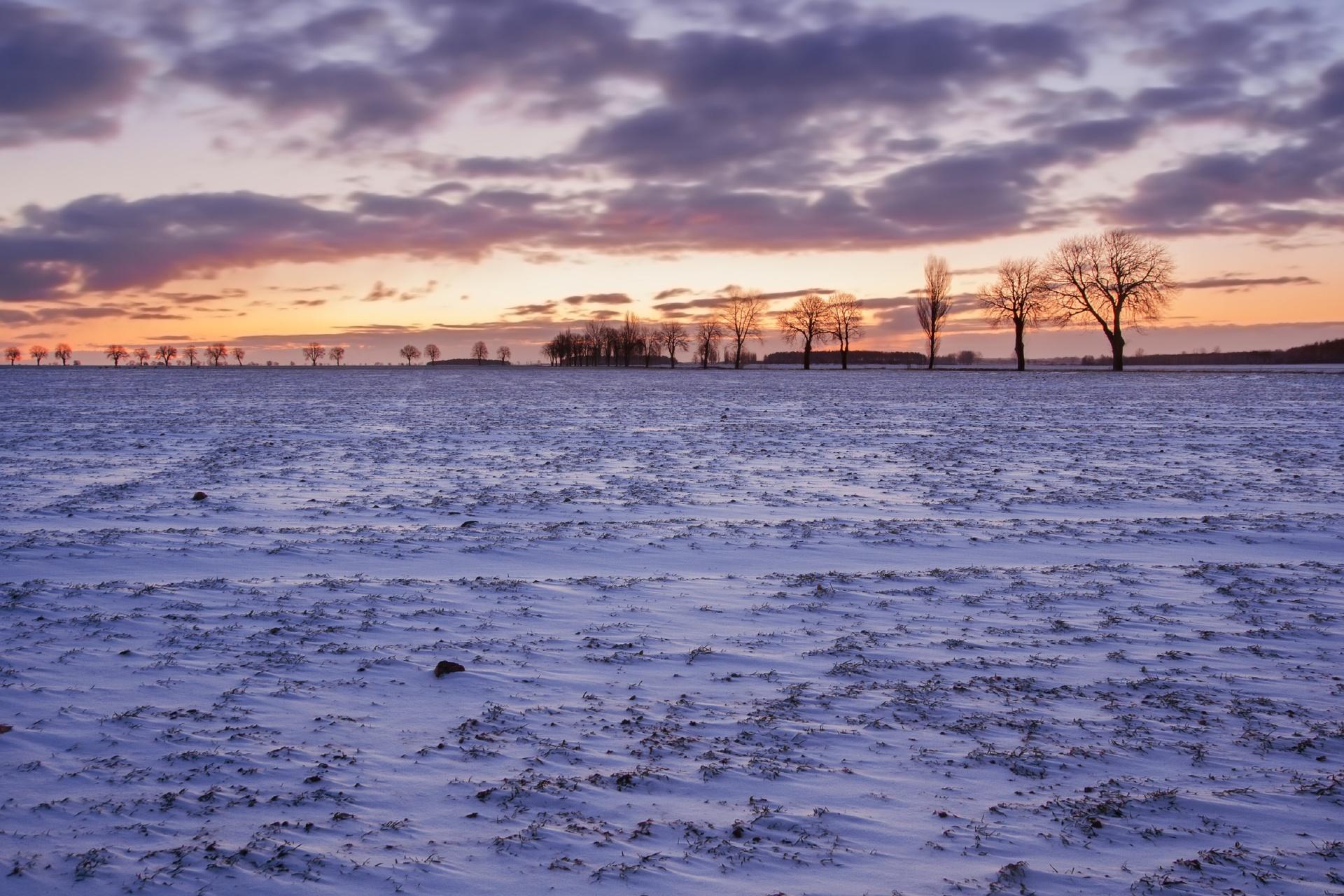 静かで美しい冬の風景