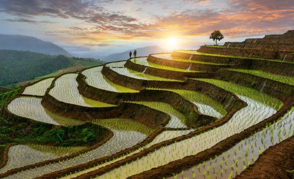メーチェムの美しい田園風景 タイの風景