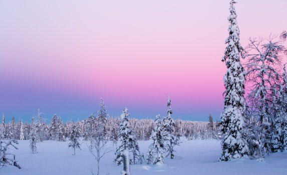 冬のラップランドの風景 フィンランドの風景