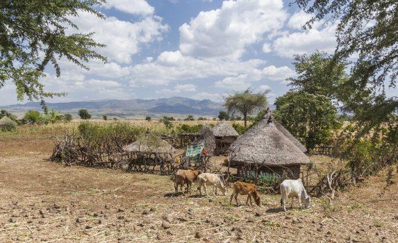 コンソの風景 エチオピアの風景