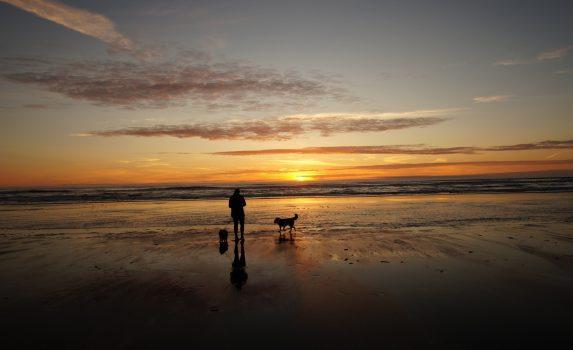 夕暮れのビーチ ワシントン アメリカの風景