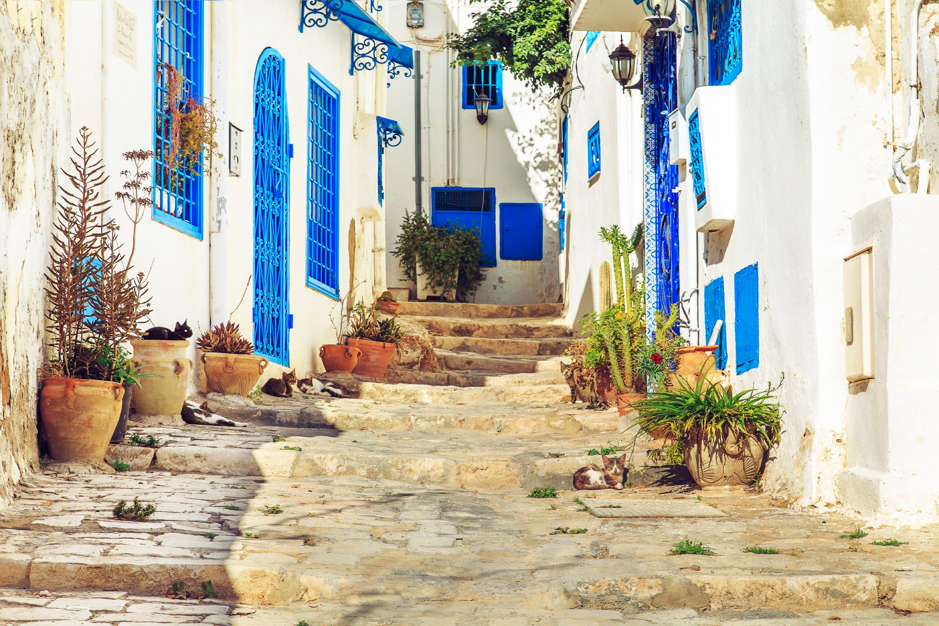 青と白の町 シディ・ブ・サイド チュニジアの風景