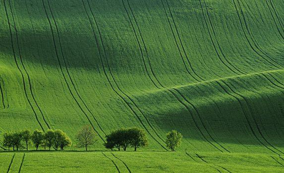 春の南モラヴィア 大草原 丘のある風景 チェコの風景