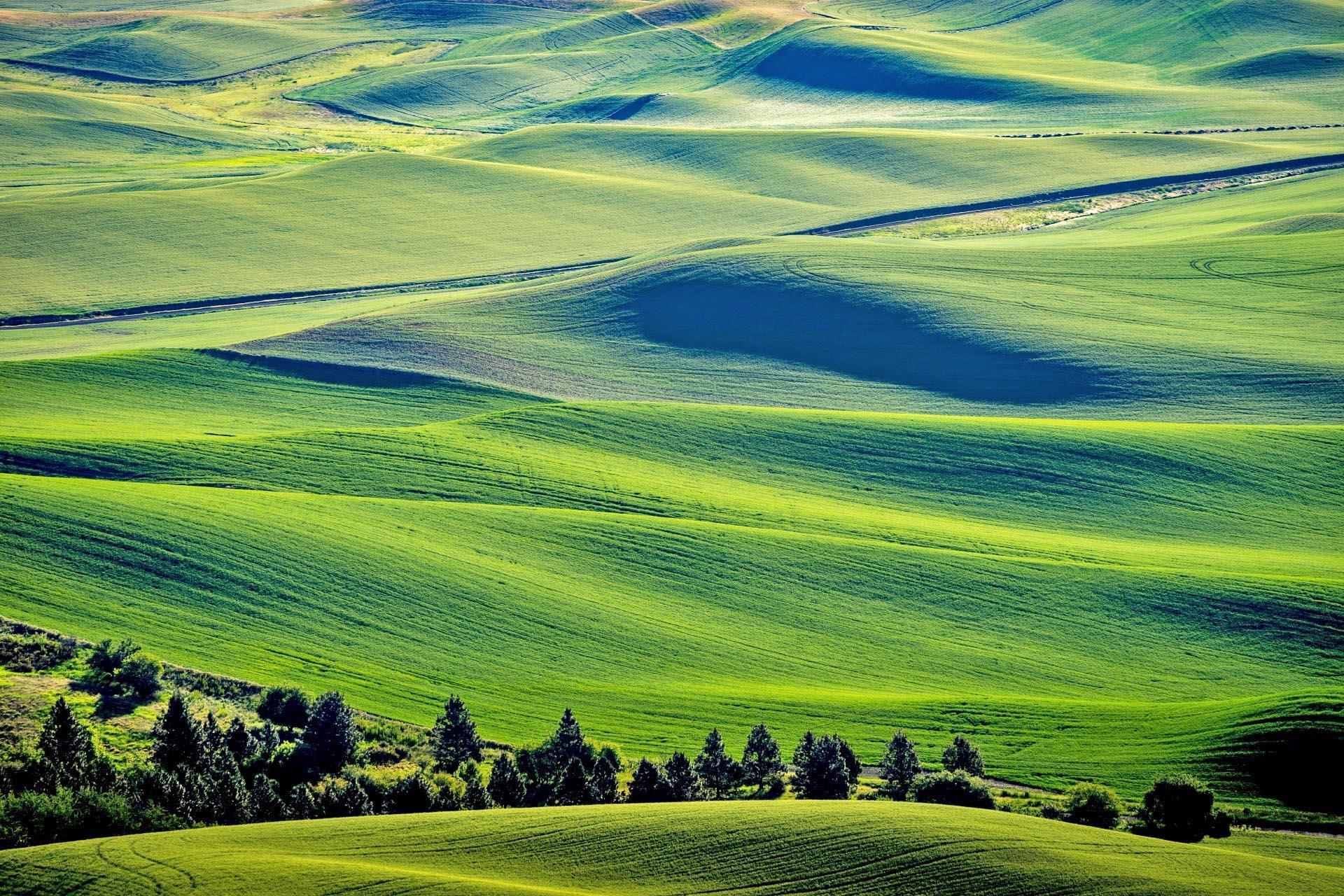 パルースの風景 ワシントン州東部 アメリカの風景