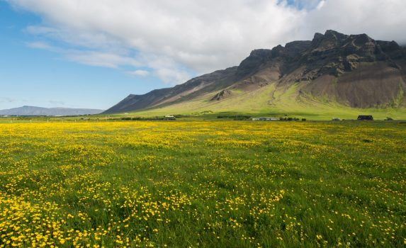 春のレイキャネス半島 アイスランドの風景