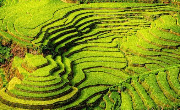 ムーカンチャイの棚田の風景 イエンバイ省 ベトナムの風景