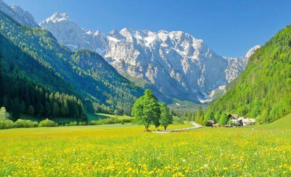 春の風景 スロベニアの風景