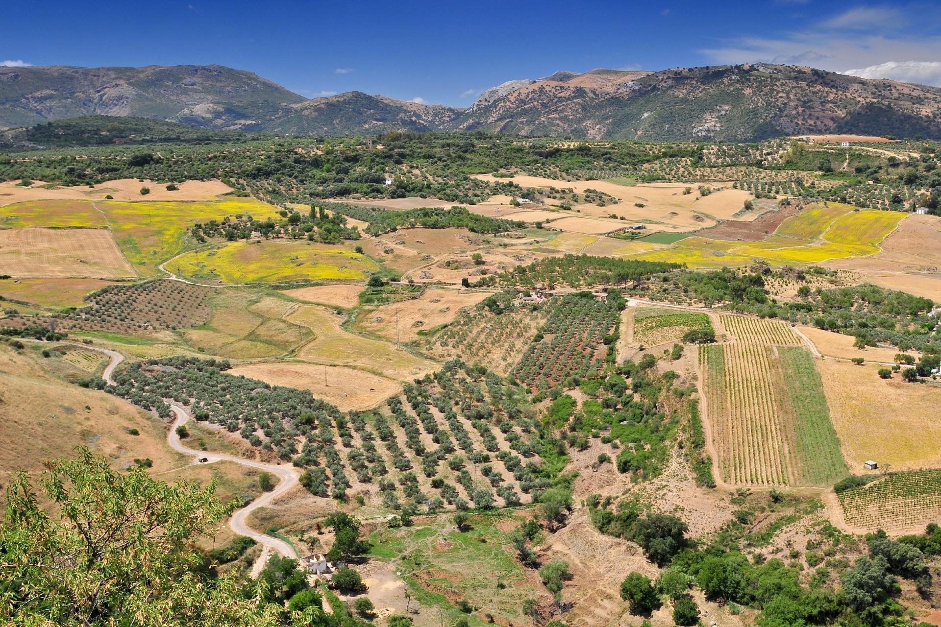 アンダルシアの風景 スペインの風景