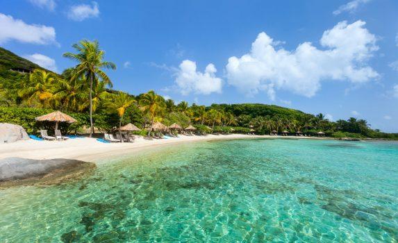 カリブ海 ヤシの木と白い砂浜の風景 イギリス領バージン諸島の風景