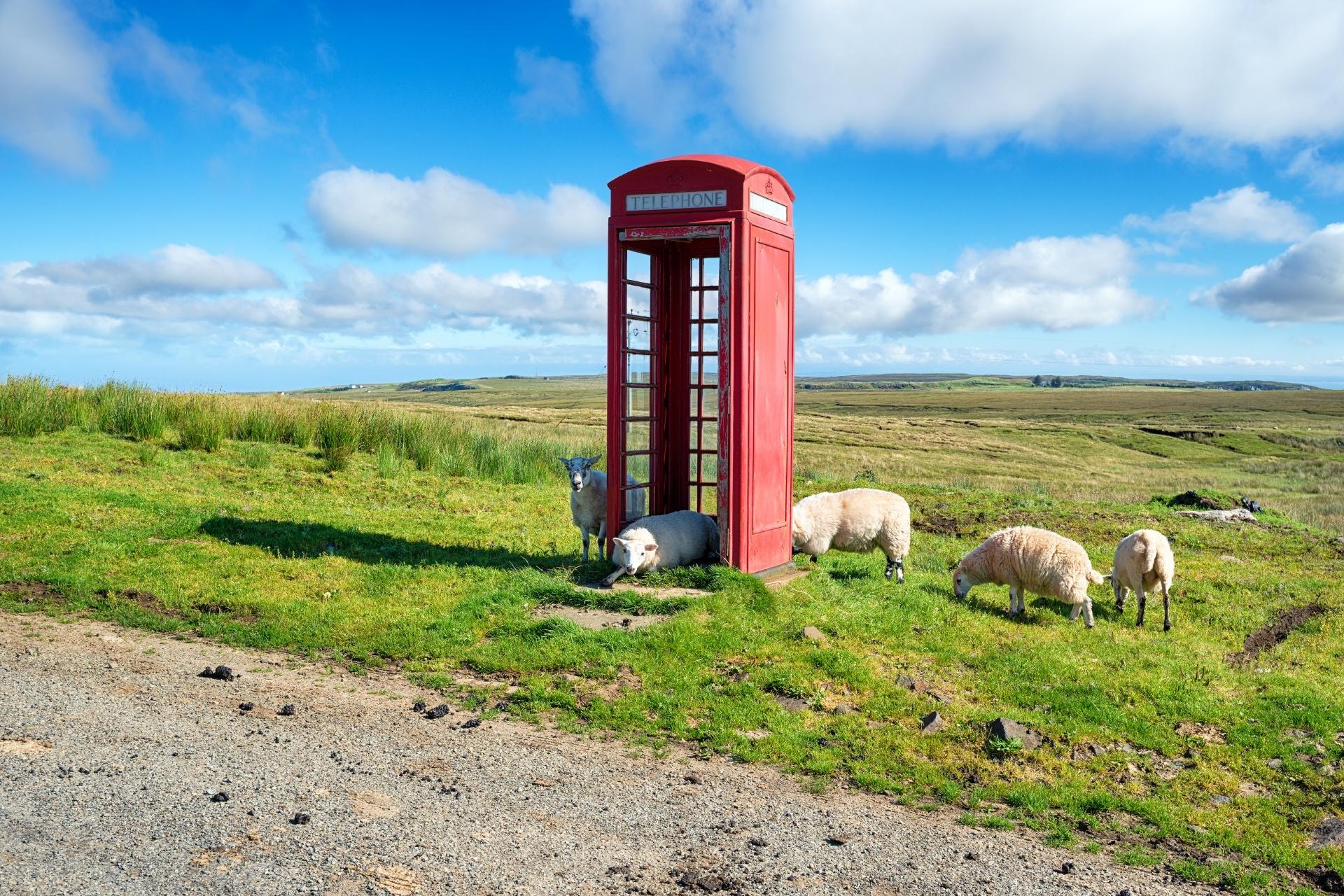 スカイ島 電話ボックスと羊の風景 スコットランドの風景
