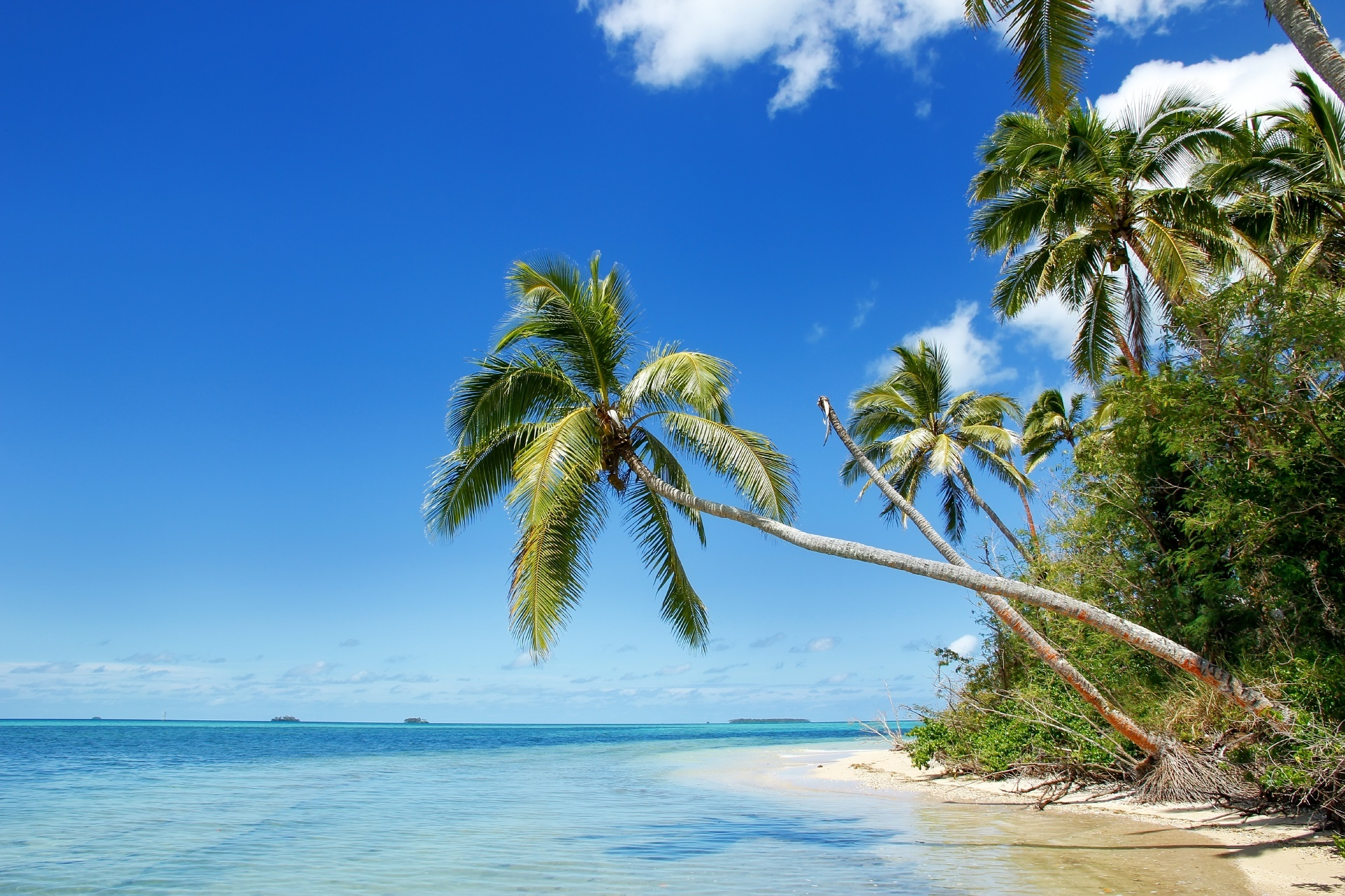マカハア島の風景 トンガ王国の風景