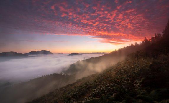 霧の朝のアラマヨナ渓谷 バスク地方 スペインの風景