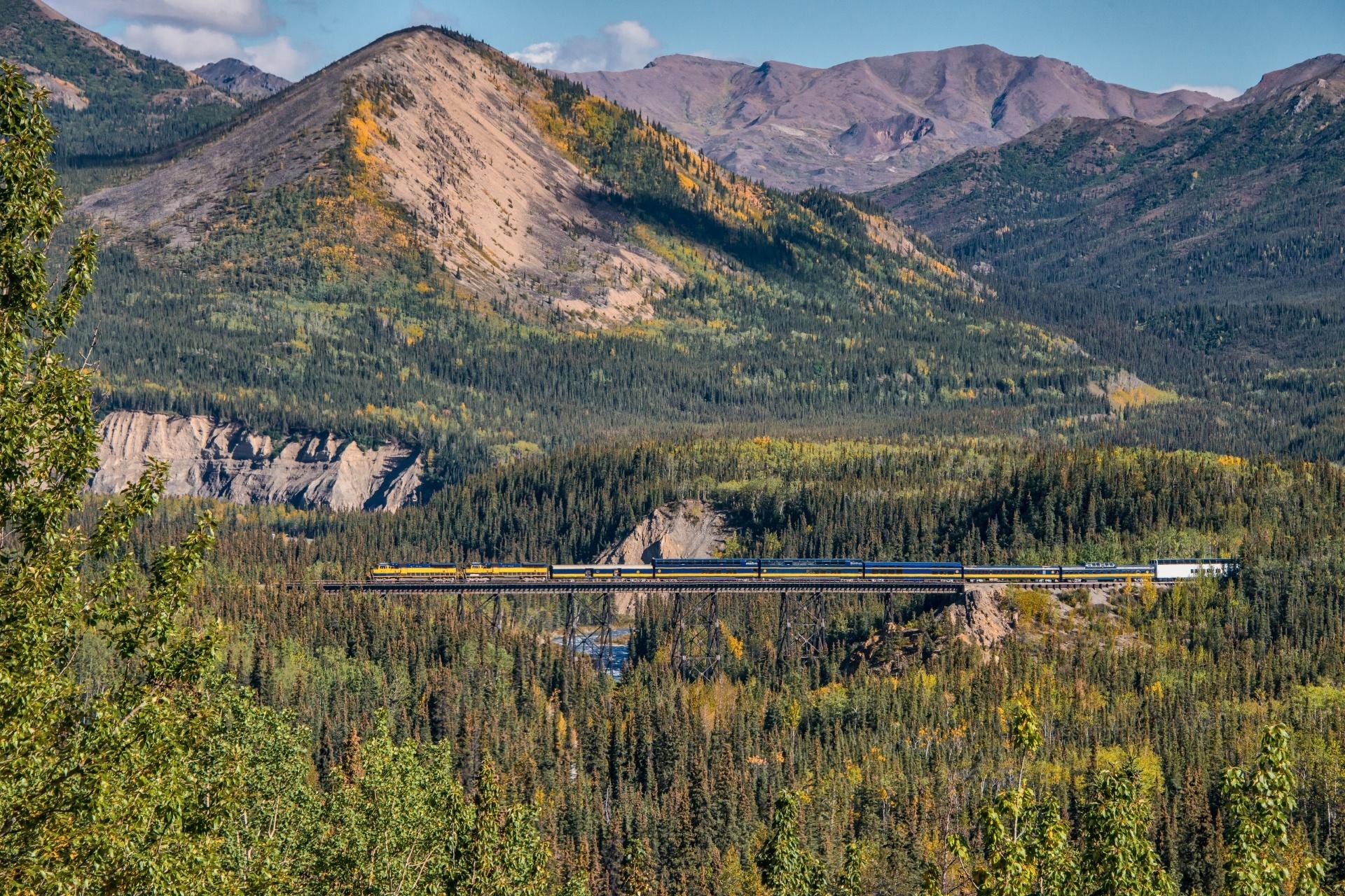 初秋のアラスカ デナリ国立公園 秋のアメリカの風景