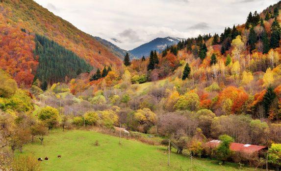 秋の山並み ブルガリアの風景