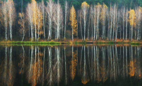 秋の湖 ウクライナの風景