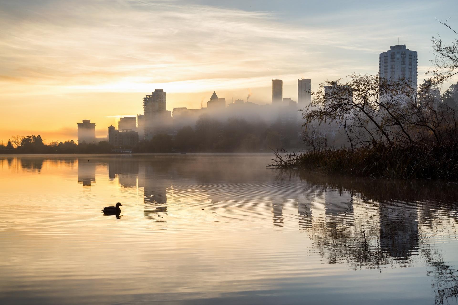 秋の朝の風景 バンクーバー カナダの風景