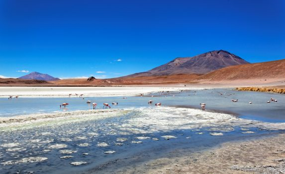 カナパ湖の風景 ボリビアの風景
