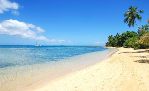 パンガイモートゥ島のビーチ トンガの風景