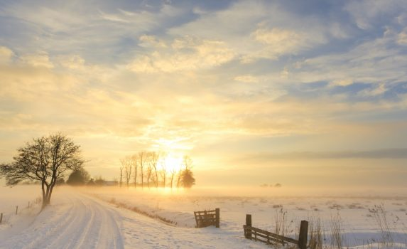 冬の夕暮れの美しい風景 オランダの風景