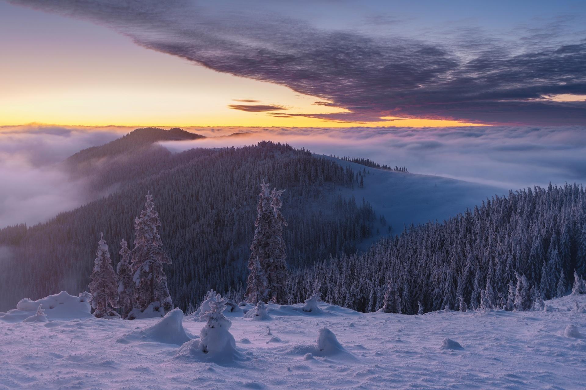 冬の夜明けの風景 ウクライナの風景