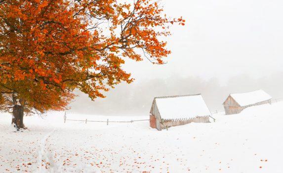 カルパティア山脈の初冬の風景