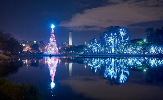 ブラジルのクリスマスの風景 夜のサンパウロ ブラジルの風景