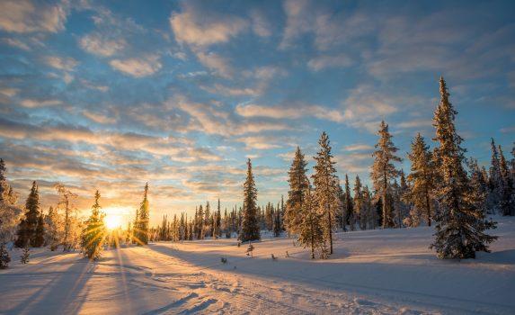 冬のラップランド 夕暮れの風景 サーリセルカ フィンランドの風景