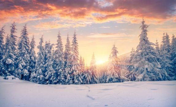 カルパティア山脈の冬の日の出の風景 ウクライナの風景