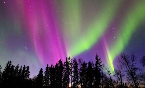 森とオーロラ カナダの風景