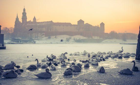 冬の朝のクラクフ ポーランドの風景