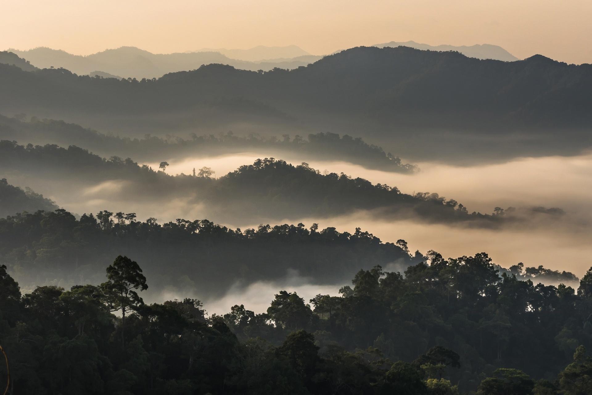 雲海の立ち込めるケーンクラチャン国立公園 タイの風景