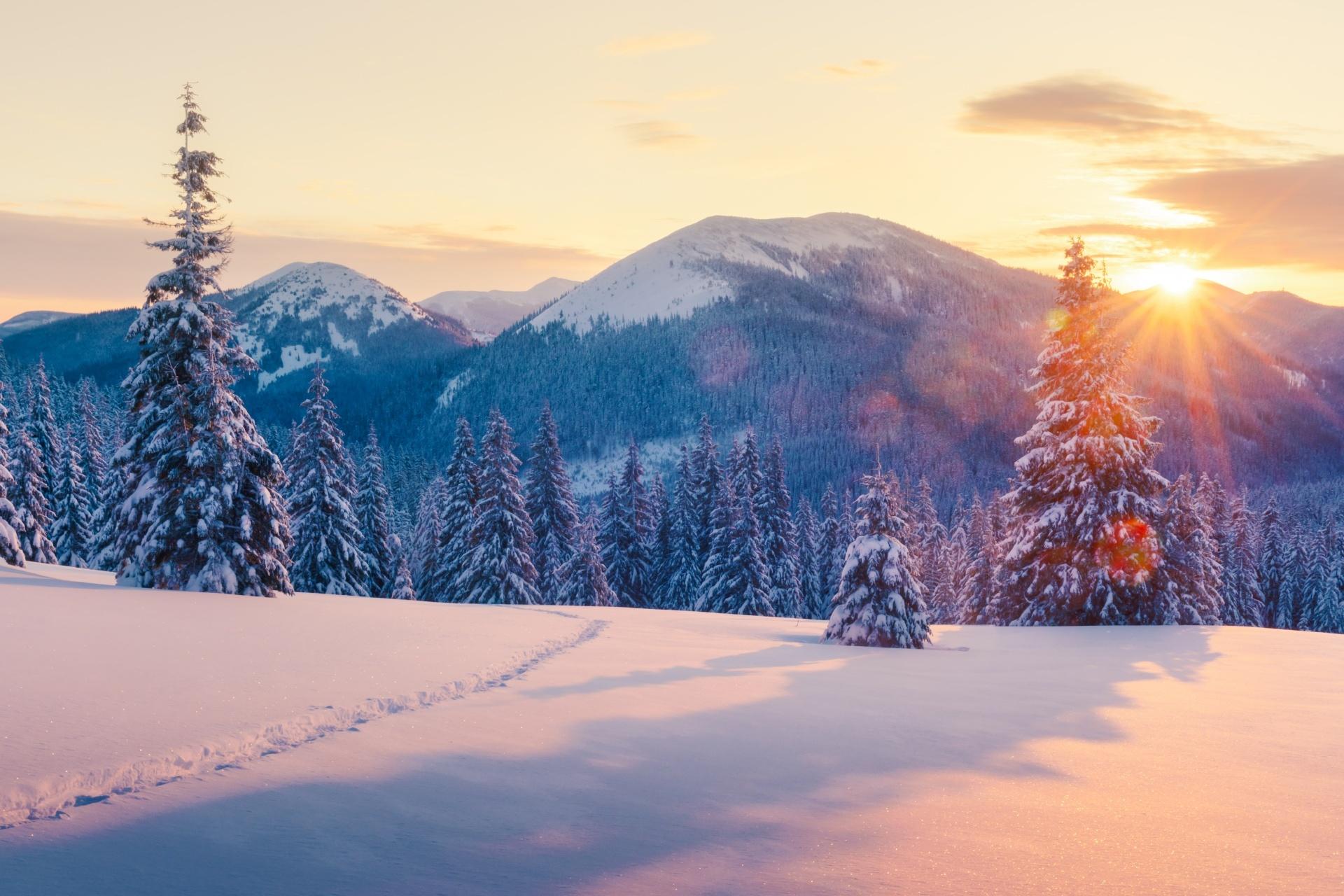 冬のカルパティア山脈 ウクライナの風景