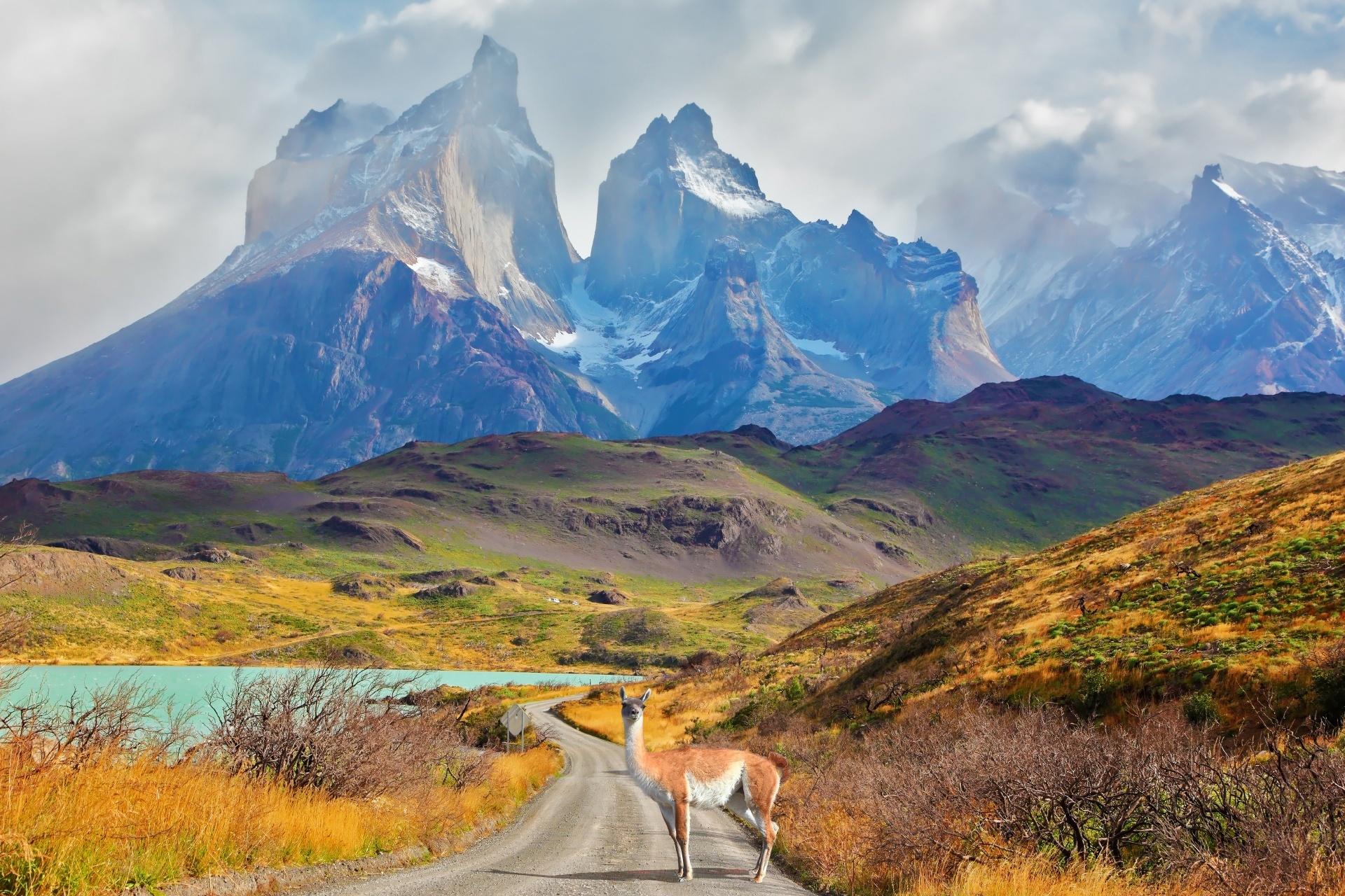 パタゴニアの風景 チリの風景