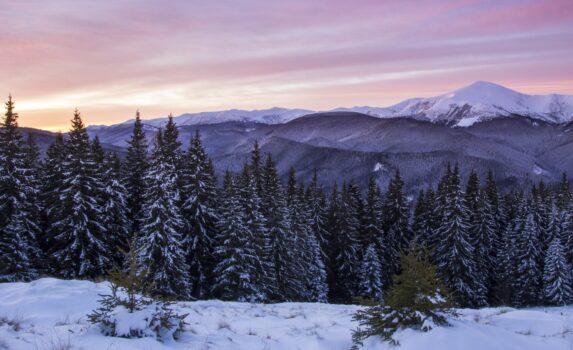 冬山の夜明けの風景 ウクライナの風景