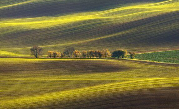 モラヴィアの草原の風景 チェコの風景