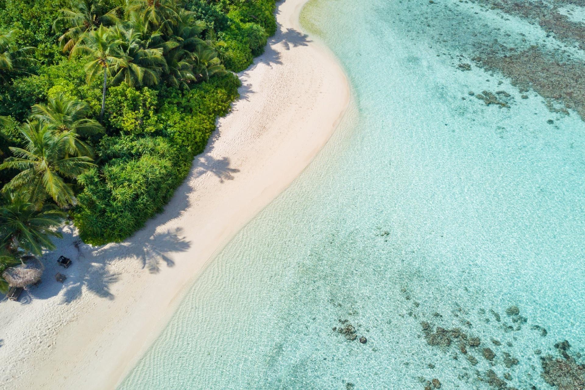 ヤシと白い砂浜と美しい海 モルディブの風景