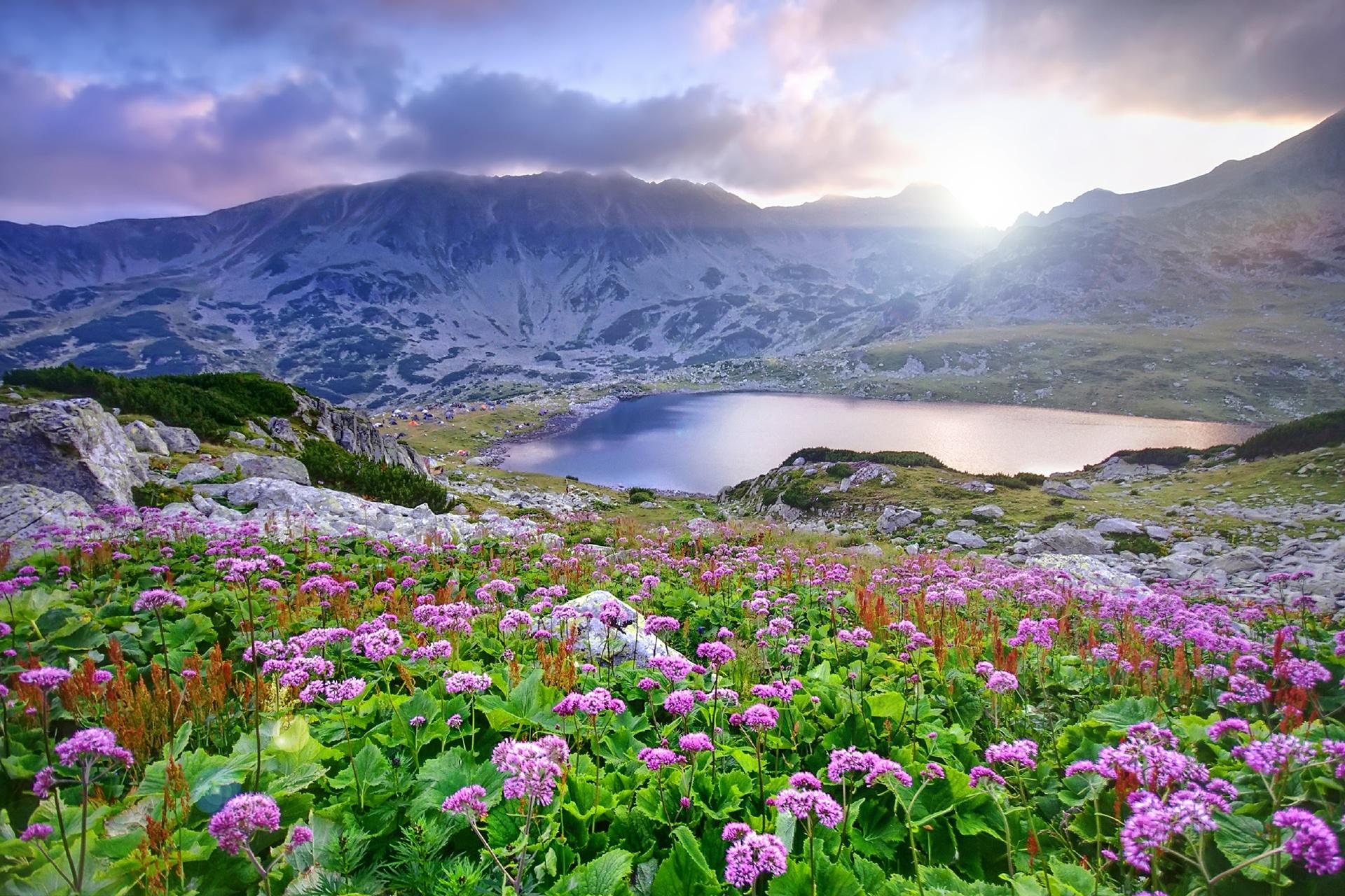 湖と山と花の風景 ルーマニアの風景