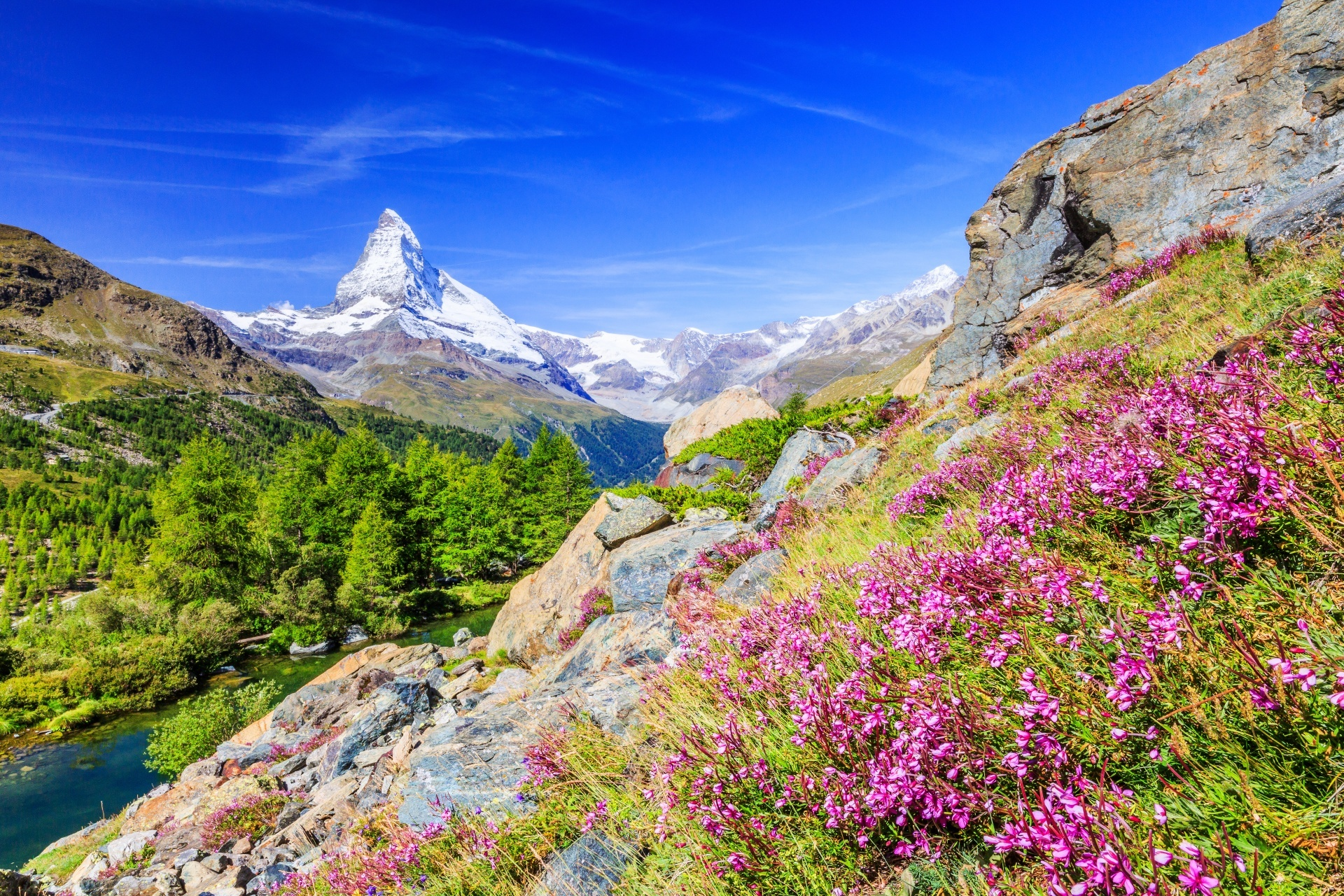 マッターホルンと花々 スイスの風景