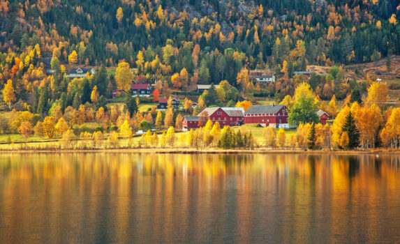 ノルウェーの秋の風景