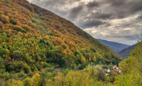 秋のリラ国立公園の風景 ブルガリアの風景