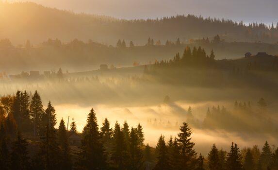秋の朝の風景 カルパティア山脈 ウクライナの風景