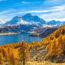 秋のシルス湖とベルニナの山並み スイスの風景