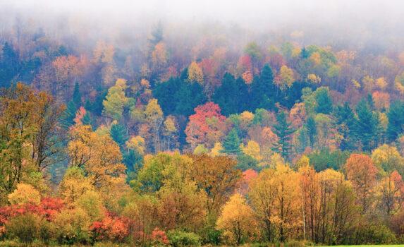 ストーの紅葉風景 アメリカの秋の風景