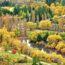 秋のニュージーランド ニュージーランドの風景
